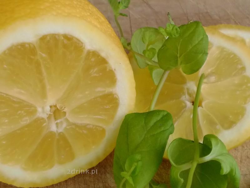 Cytrusy na sok – jak kupować, jak wyciskać